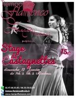 12_stage-castagnette-12-01-14.jpg